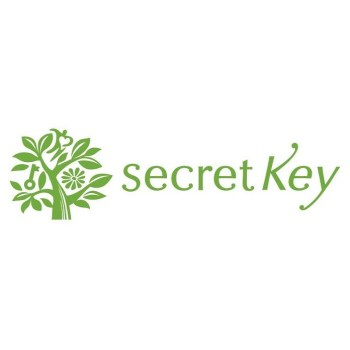 Secret-Key-logo
